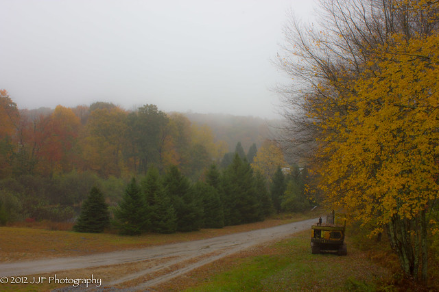 2012_Oct_19_Autumn Rain_004