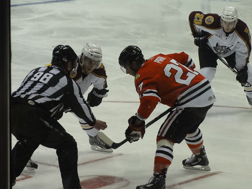 Chicago Wolves v. Rockford IceHogs