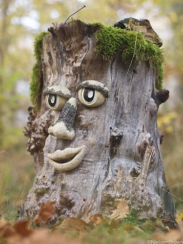 Stump Face