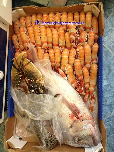 Astice, Pagro azzurro, Scampi /    Omar, Pageot, Langoustine