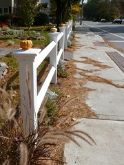 Pumpkins on fence posts