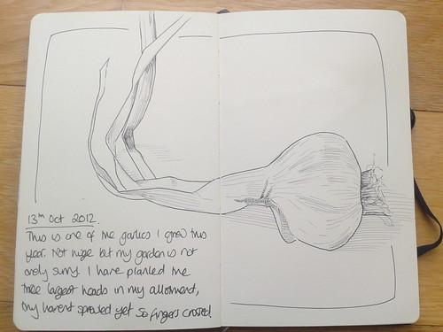 Garlic by nualacharlie