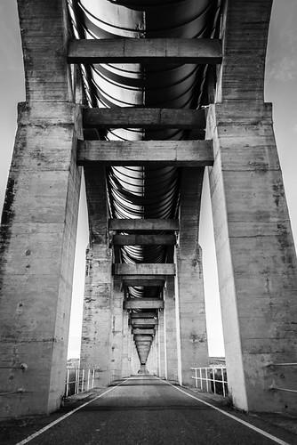 """188/365 """"Carreducto"""" by Flickr Jiménez (Pedro Nog)"""