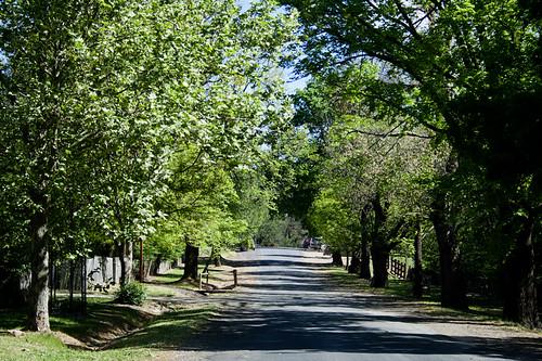 Beyer's Avenue, Hill End