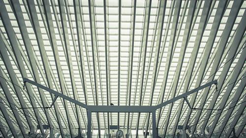 A Bird in the Future (Gare de Liège-Guillemins) - Photo : Gilderic