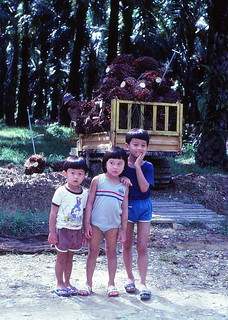 1982 - Leon, me, Shan by oil palm tractor