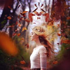 October by Rachel Baran