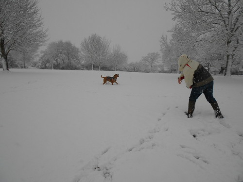 Playing snowball with Molly