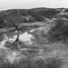 Bray-Dunes - Dunes du Perroquet