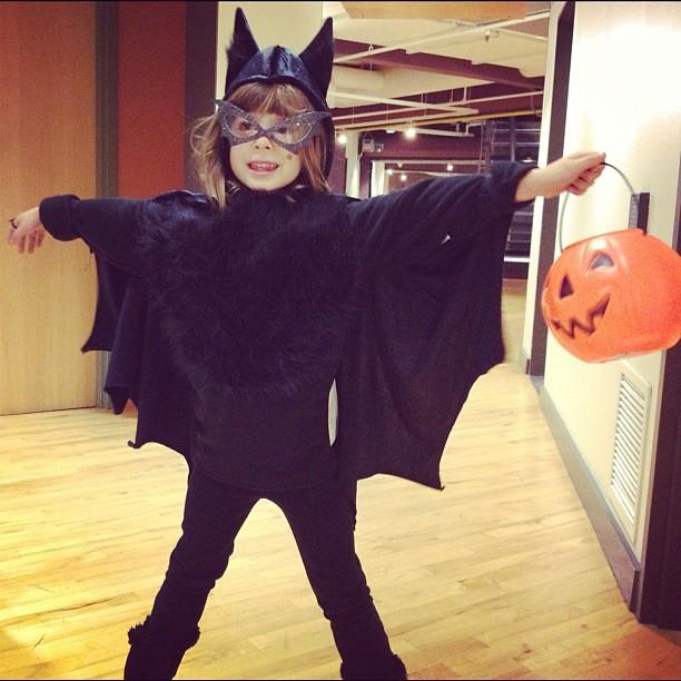 Vampire bat invades Starbucks HQ