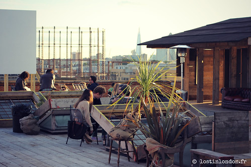 netil house rooftop