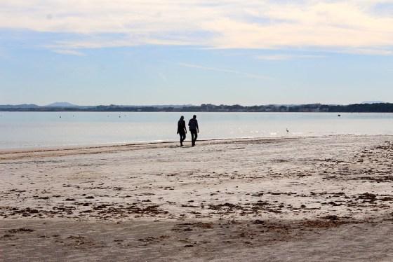 Port d'Alcudia beach, Travellers' Choice on Trip Advisor