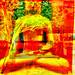 Museum/Buddha Mix