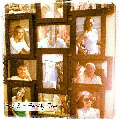 Feb 3 - family tree {this is the closest I can get to a family tree; the family photo collage} #photoaday