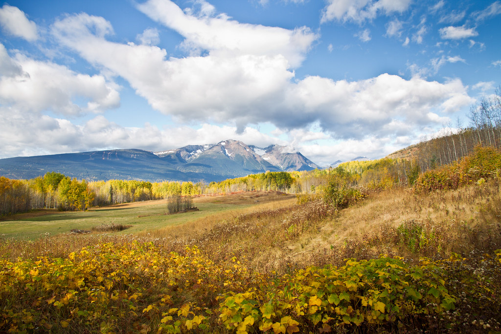 Smithers BC Field view landscape