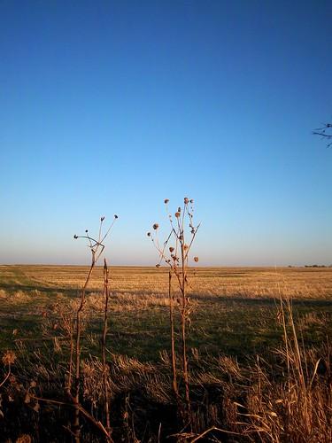 beautiful Oklahoma landscape