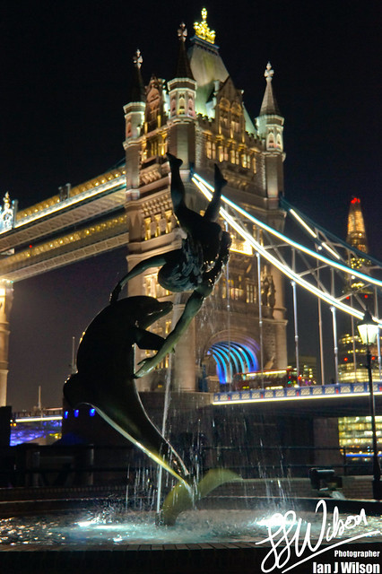 Tower Bridge Dolphin – Daily Photo (20th November 2012)