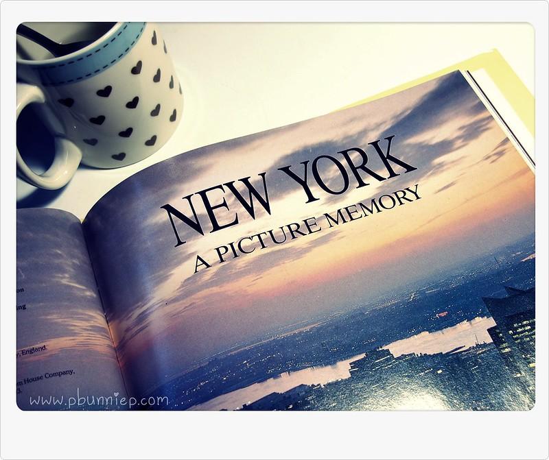I Dream of NYC-02