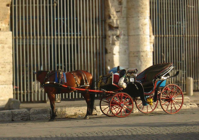 horse and buggy caleche in Rome