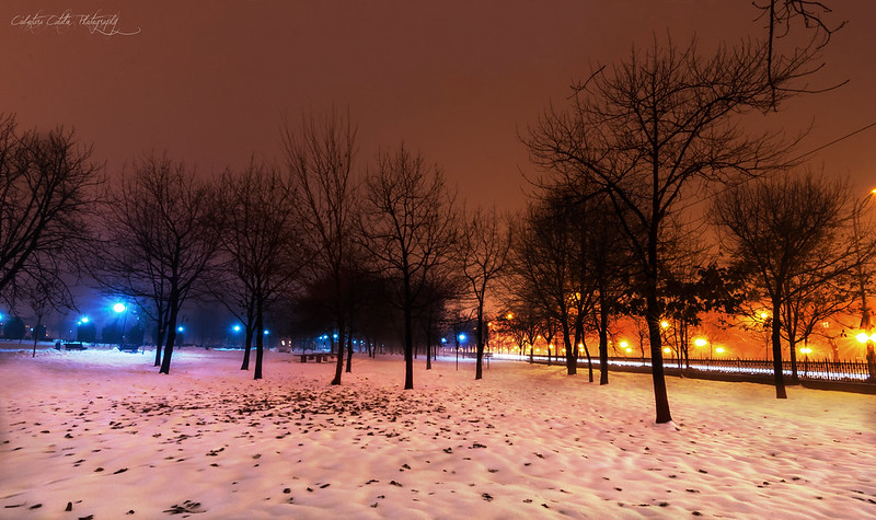 Winter lights in the city
