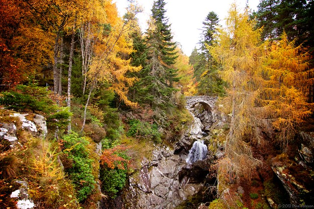 The Bridge over the lower Falls of Bruar