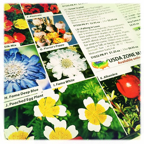 first seed catalog of the winter/spring season