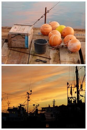 Rügen Nov 2012 2012-11-0411
