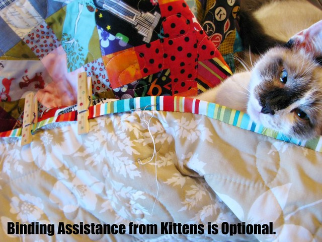 How to Bind a Quilt, Kitten