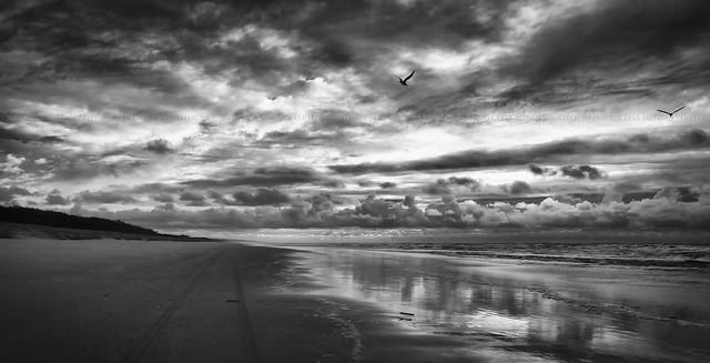 Fraser Island, Queensland, Australia, Jun 2012