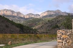 Escaladei, Priorat, Spain