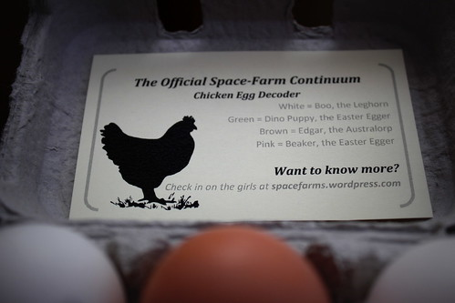20121223. First egg sale - know where your food comes from.
