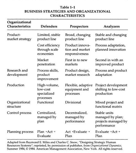 Business Strategies and Organizational Characteristics