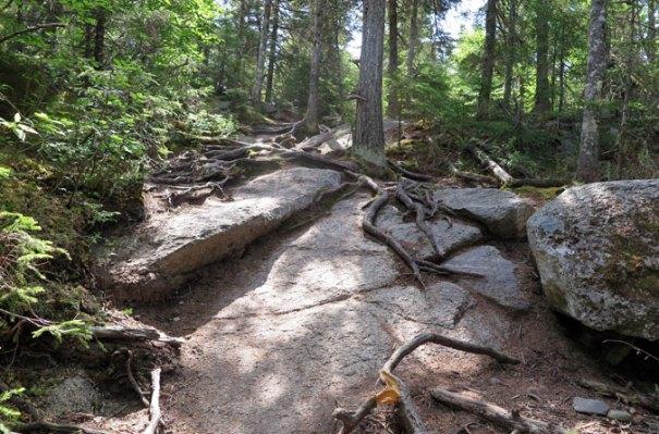Bald Mountain Trail Rocks