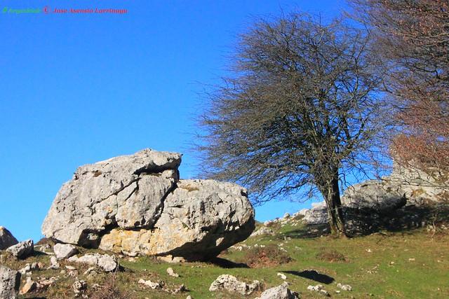 Parque Natural de Urbasa-Andía #Photography #Foto #Flickr 98