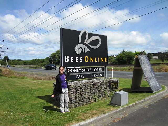 Bees Online 1