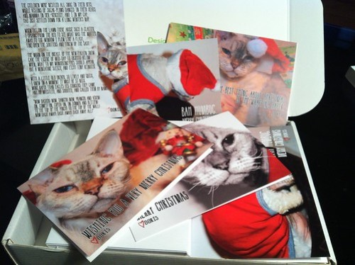 Personalised Christmas Cards from Moo