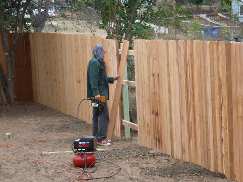 12-14-12 TX - Austin, Backyard Fence 2