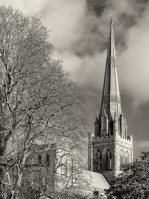 Chichester Cathedral from Bishops Palace Gardens