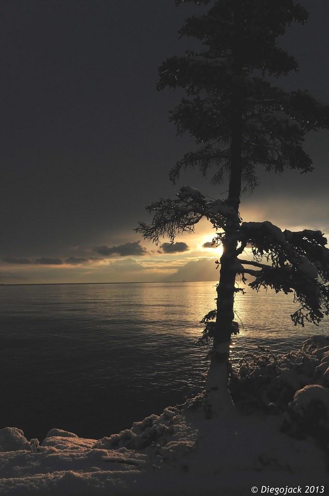 Soleil hivernal sur le lac