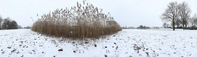 Zo ziet er een gewoon panorama uit - Voorkomen van lange, smalle panorama foto's