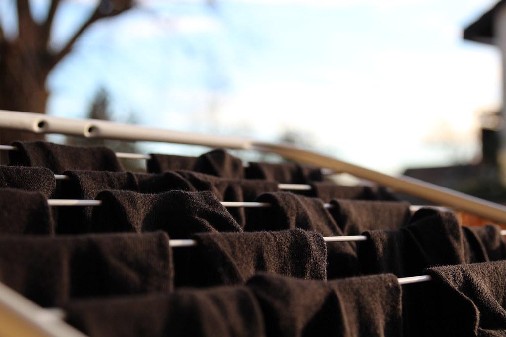 Socks In The Sun