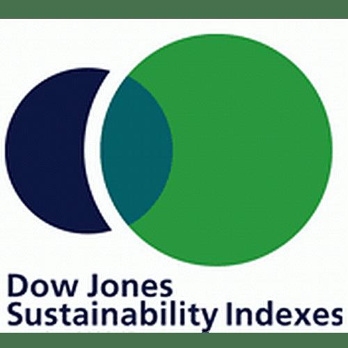 Logo_Dow-Jones-Sustainability-Indexes_dian-hasan-branding_US-3