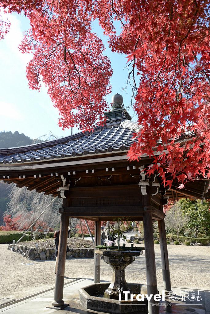 《京都赏枫景点》善峯寺:洛西一绝枫色景点,值得费劲交通前往饱览