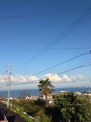今朝は暖かい