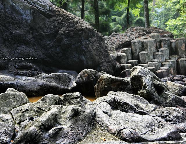 Rocks in Evolution Garden Singapore Botanic