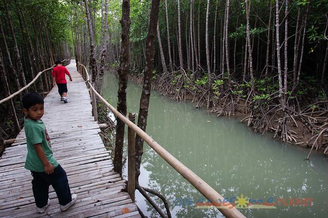 Bakhawan Eco-Park-29.jpg