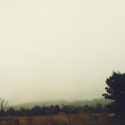 foggy-forest-hills