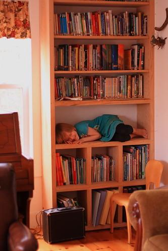 Prairie on bookshelf