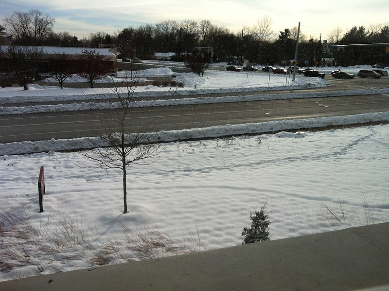 My snow view