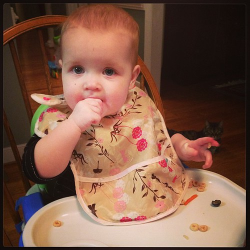 Dinner time. Cheerios, blueberries, and chicken #latergram